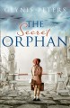 Go to record The secret orphan