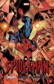 Go to record Spider-Man. Light in the darkness